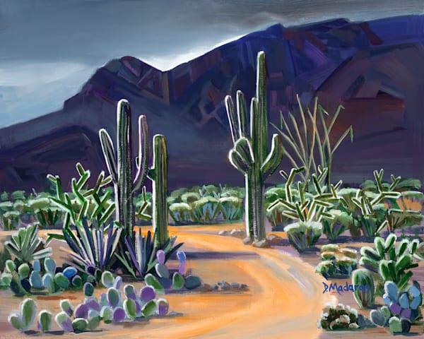 Illumination | Southwest Art Gallery Tucson | Madaras