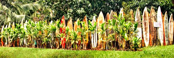 """Surfboard Fence"""