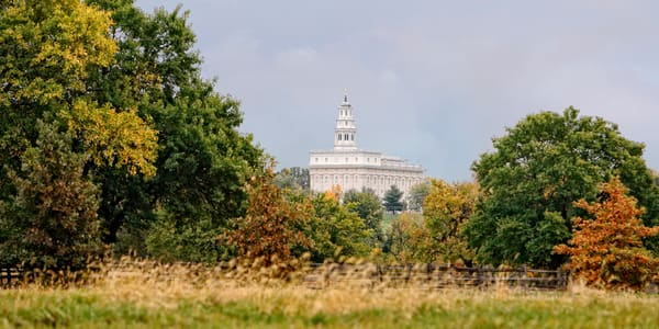 Nauvoo Temple - Through the Trees