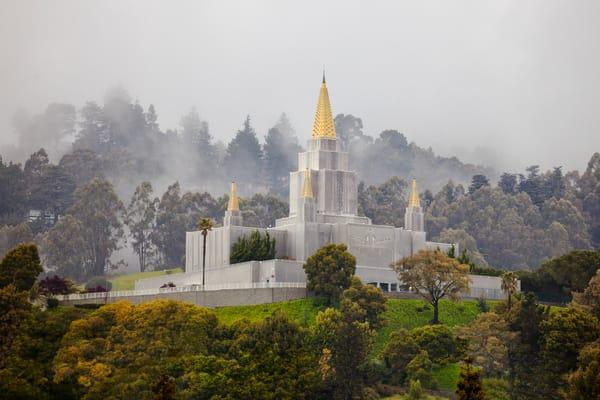 Oakland Temple - Fog