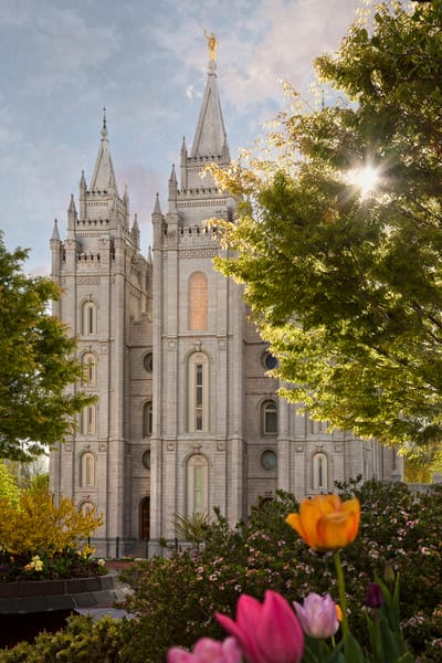 Salt Lake Temple - Springtime in Zion