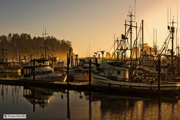 Golden sunset over La Push Harbor on the Olympic Peninsula of Washington State/Ultra HD prints available to purchase by Tom Schoeller