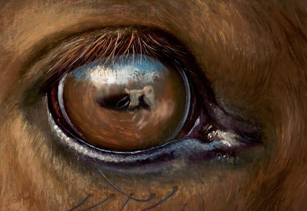 Eyebull