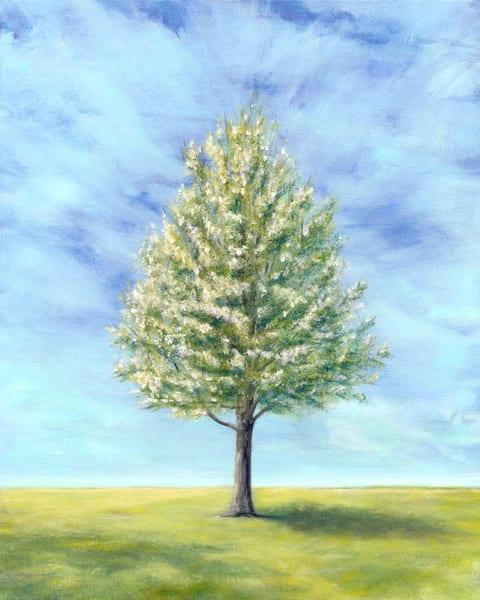 Leonas Tree/Spring