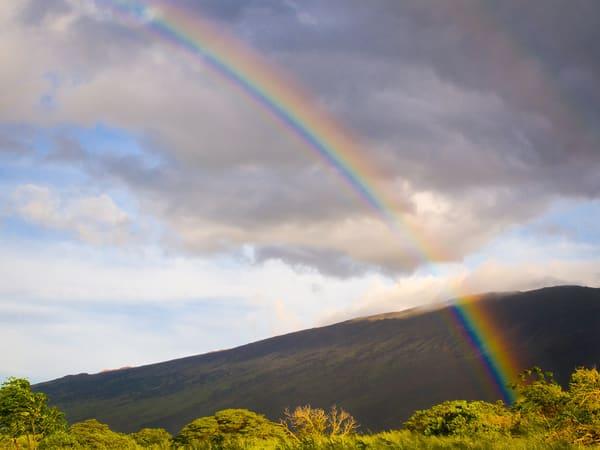 Maui Rainbow 1