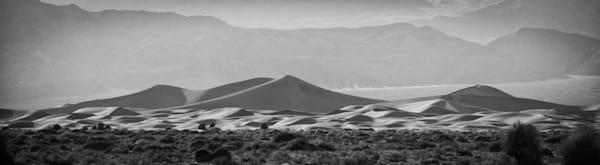 """""""Desert Land"""""""
