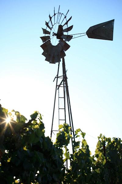 """Windmill Silhouette"""