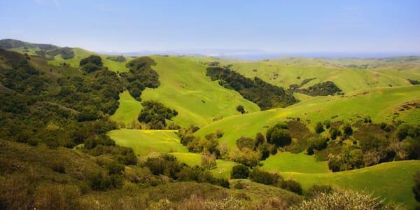 """Central Coast Green Hills"""