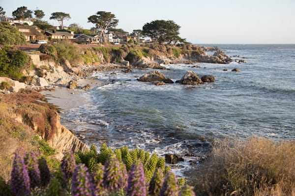 """""""Pacific Grove Cove"""""""