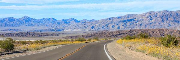"""""""Desert Road"""""""