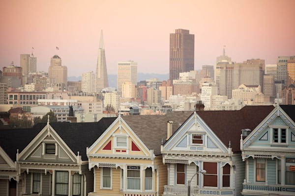 """Painted Ladies"""