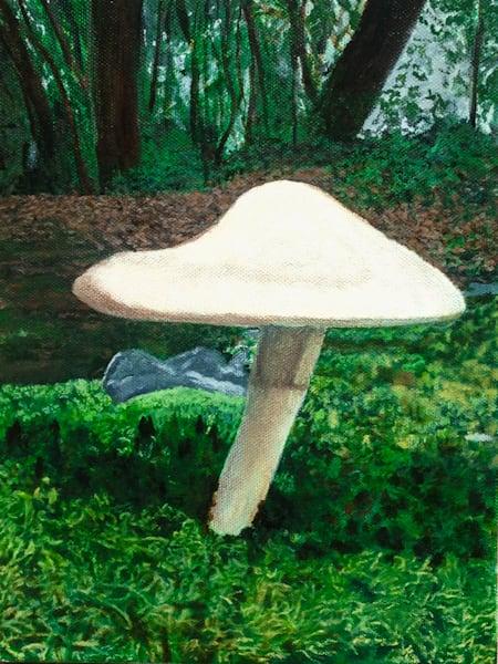 Cabin Mushroom - Original