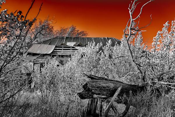 Dsc08722 Edit Photography Art | reflectedpixel