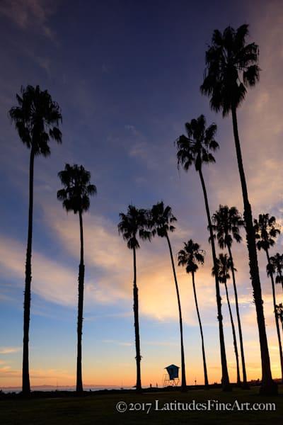"""""""California Dreaming"""" W8A8761-2"""