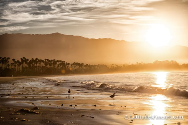 """Golden Sunrise, Santa Barbara"""