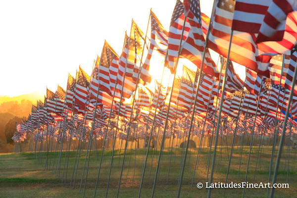 Sea of American Flags 2