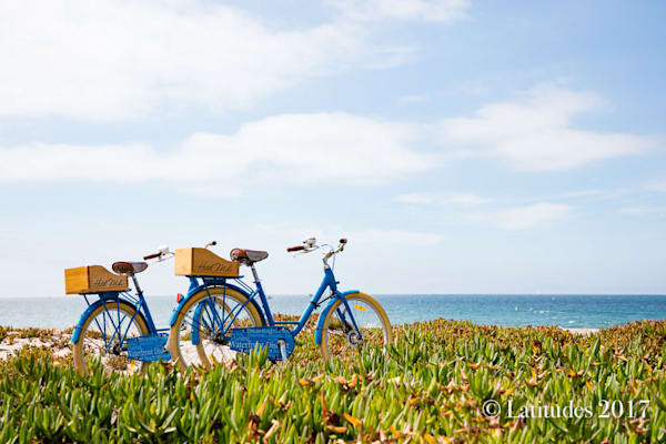 Bikes on the Beach W8A3939