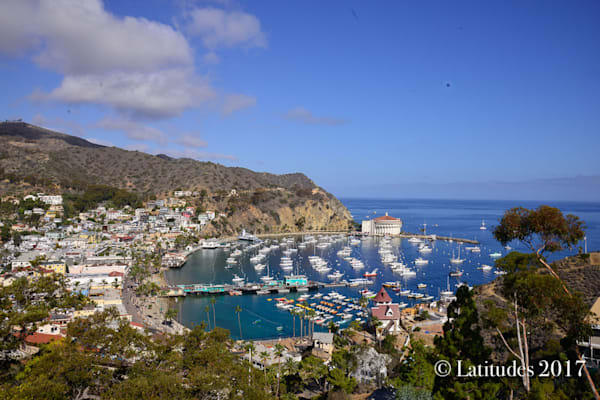 Catalina Island Harbor View