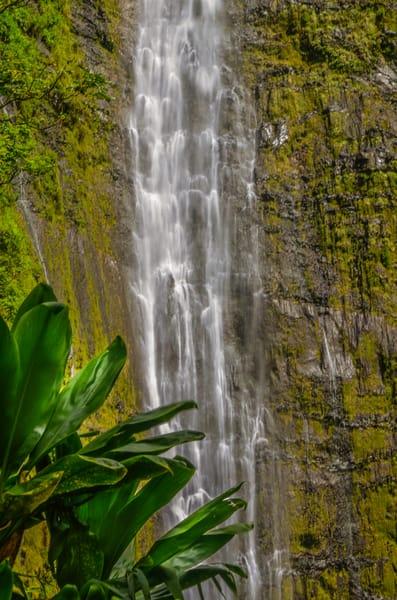 Maui Waterfall 003