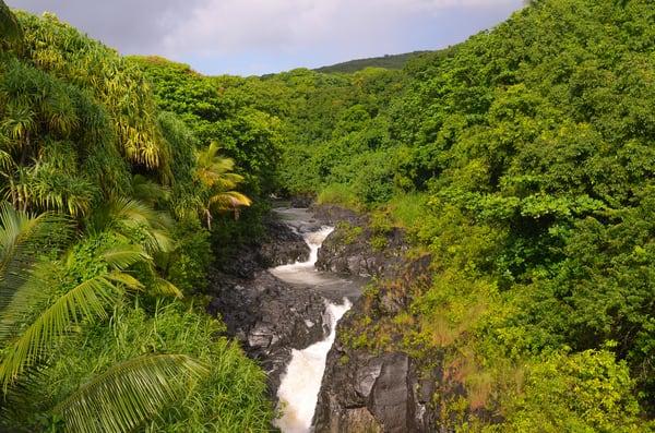 Maui Waterfall 002