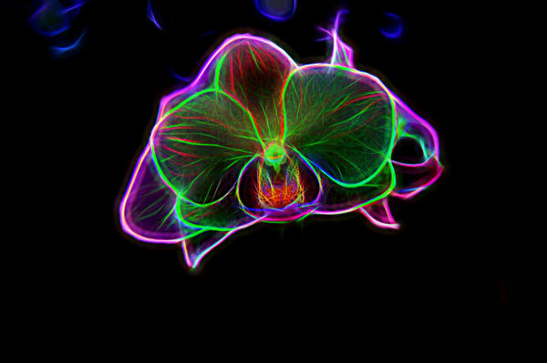 Neon-line-art