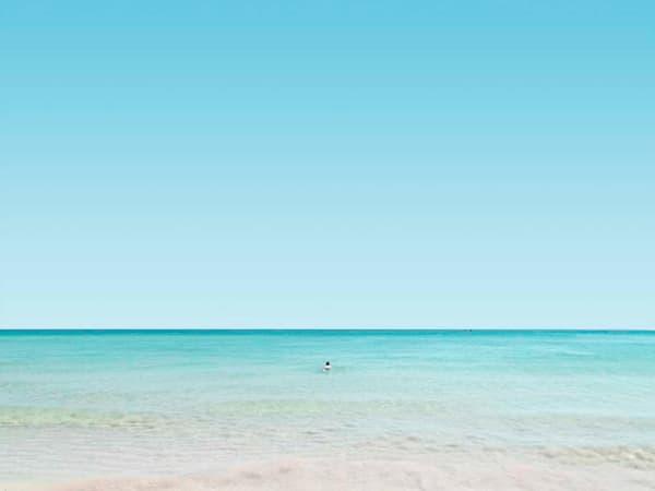 Swim Away Photography Art | DE LA Gallery