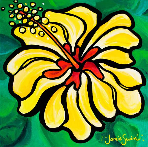 Sunset Hibiscus Art by Jamie Swim Art