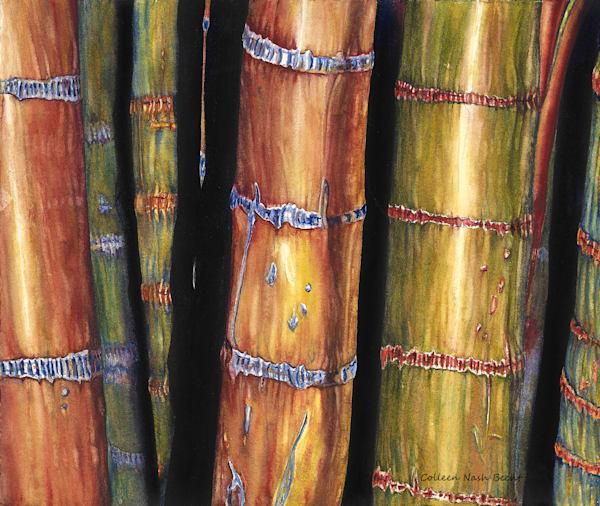 Maui Waui Bamboo Art | ColleenNashBecht
