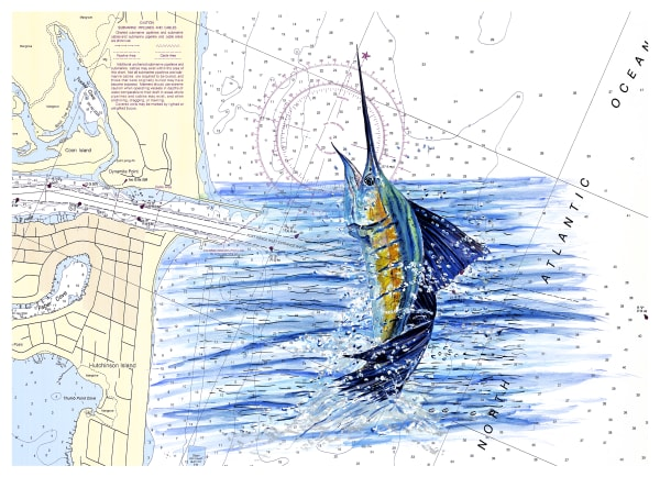Off The Charts Sailfish Art | ColleenNashBecht