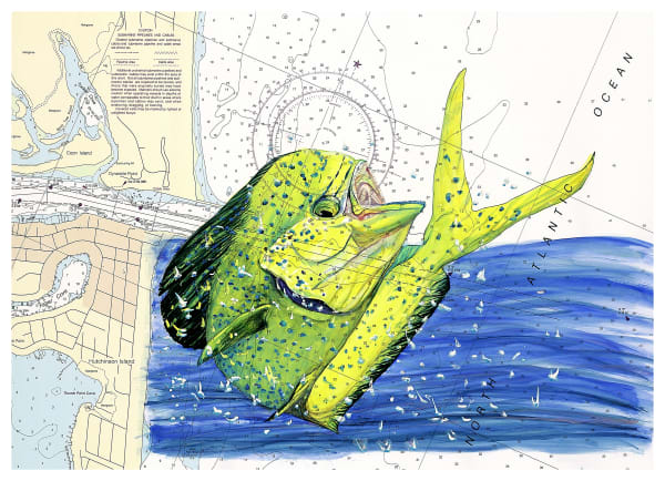 Endless Summer Fishing Art | ColleenNashBecht