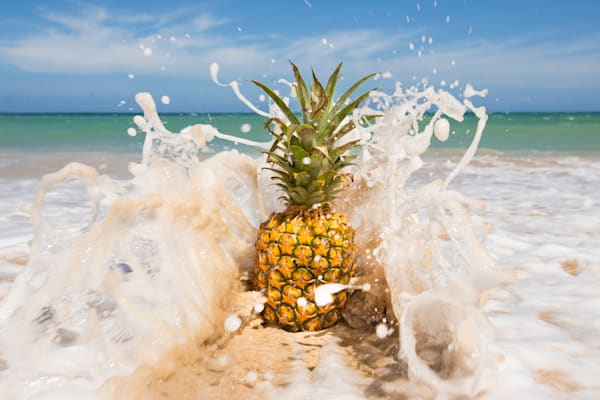 Pineapple Fine Art Print Photographs