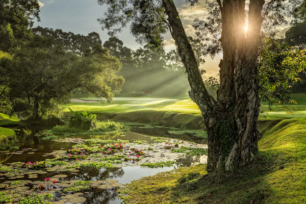 Hong Kong Golf Club, New Course, 9th Green at Sunrise