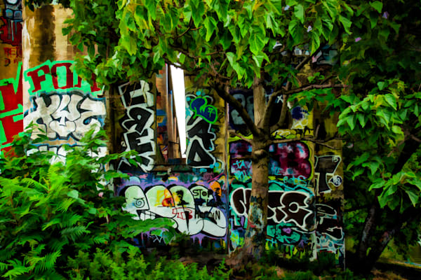 Graffiti In Trees Fine Art Photograph | JustBob Images