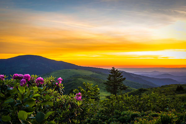 Roan Mountain Sunset Photograph for Sale as Fine Art