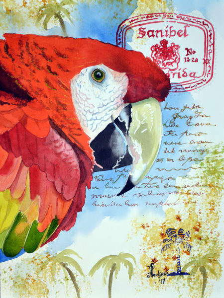 Watercolor painting of a Sanibel parrot - Prints Available
