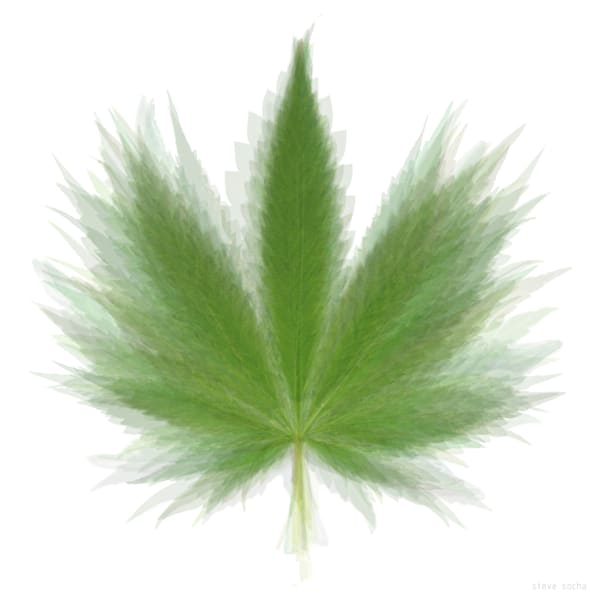 This is an overlay of a Pot Leaf