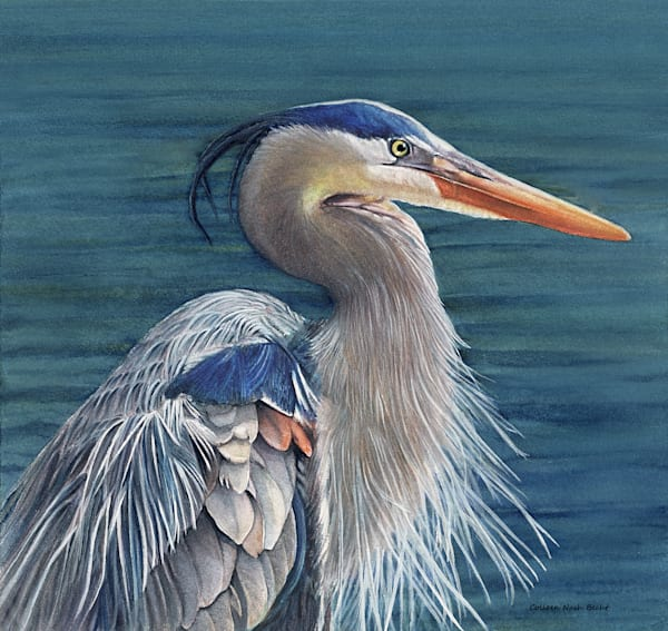 Blue Heron Art | ColleenNashBecht