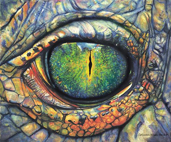 Gator Eye Art | ColleenNashBecht