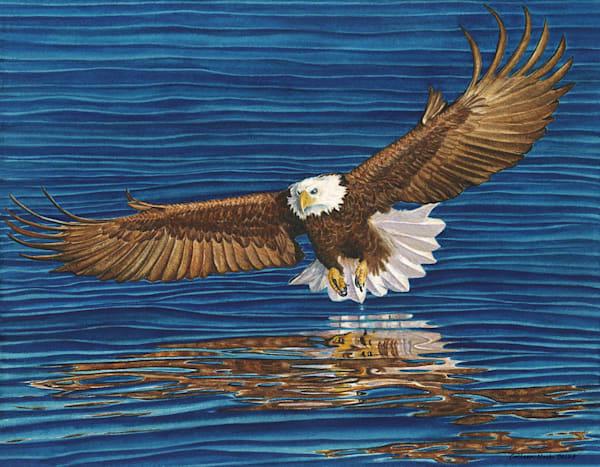 Bald Eagle Art | ColleenNashBecht