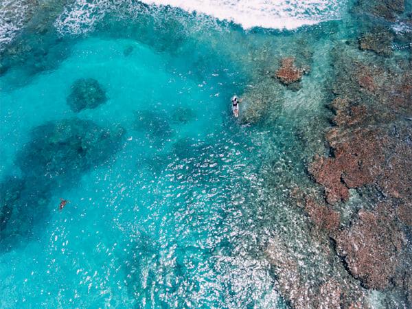 Reef traffic