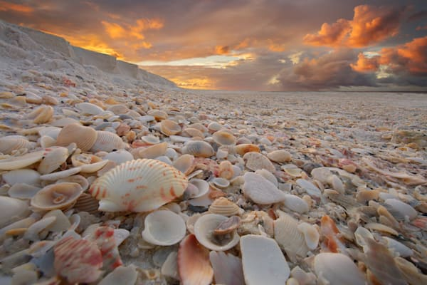 Shells on Shells