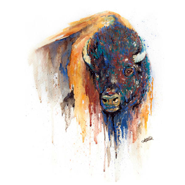 Watercolor Buffalo Square Print by Sally Barlow
