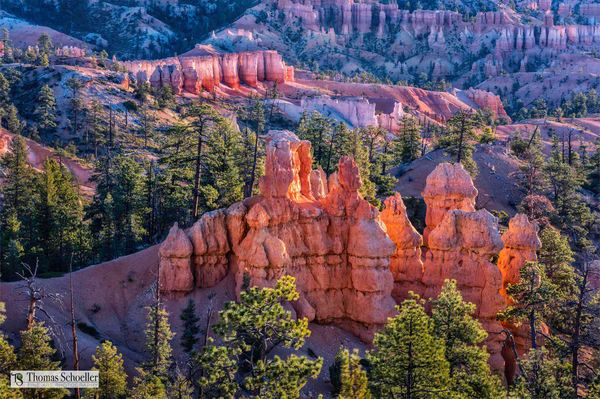 Richly colored earth tones of Utah's Bryce Canyon National Parks hoodoos/Fine art landscape photography