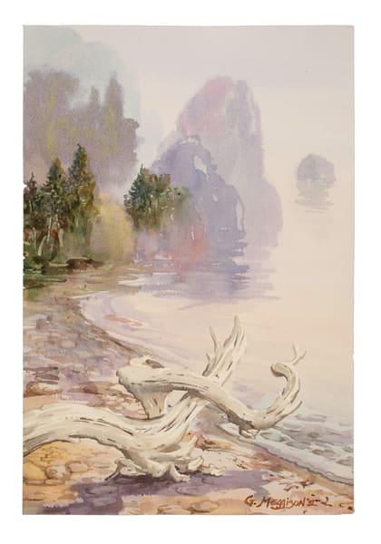 Olympic Shore   Zen Landscapes   Gordon Meggison IV