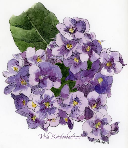 Feb Violet Art | Geoffrey Butz Art & Design Inc