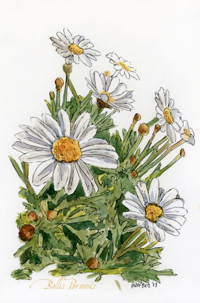 April Daisy Art | Geoffrey Butz Art & Design Inc