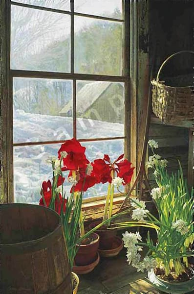 Amaryllis and Paperwhites on Fine Art Paper for Sale