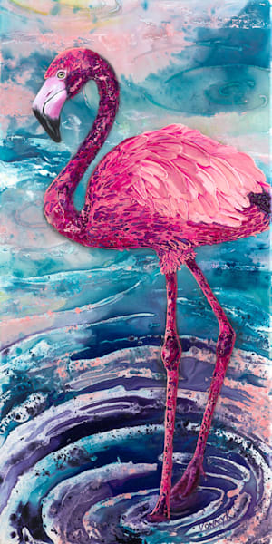 Flamenco Flamingo