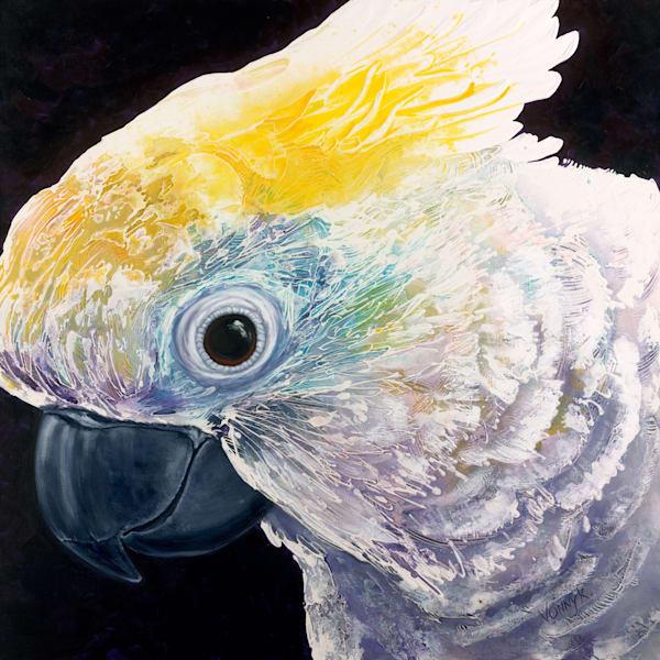 Whos a Pretty Polly