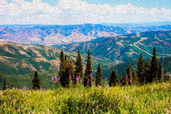 Eastern Wilderness